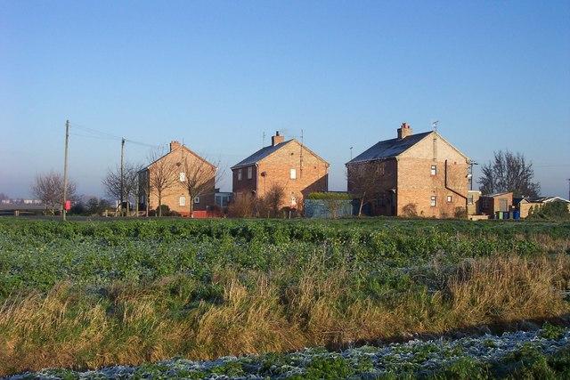 Three fenland cottages