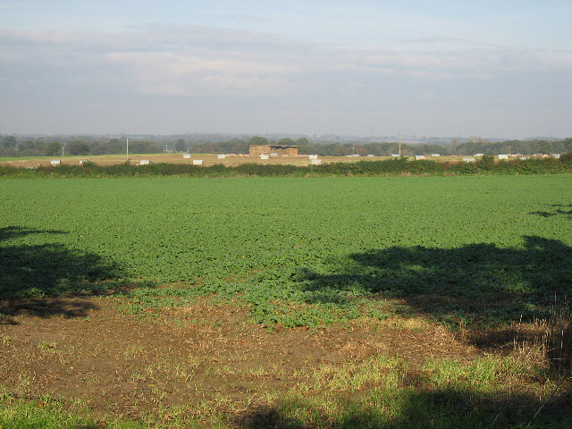 Mixed Arable And Livestock