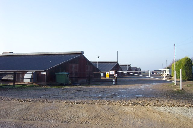 Lutton Gate poultry sheds
