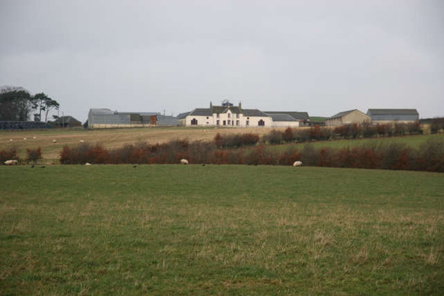 Welton Farm