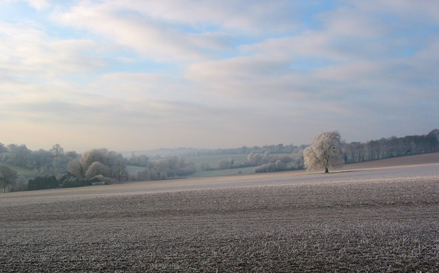 Winter view of Lane End Farm from road above Lane End Copse