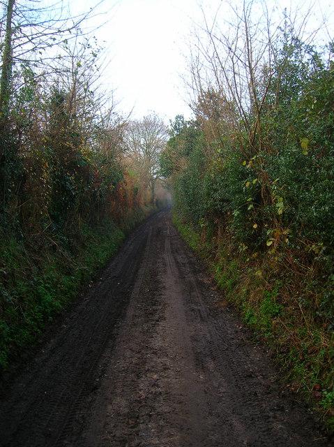 Bridleway to Broomershill
