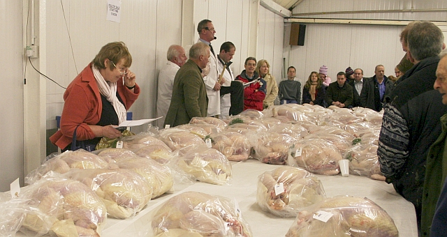 Auction of Turkeys