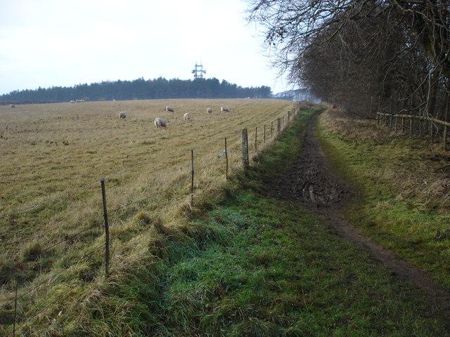 Bridleway on Bredon Hill
