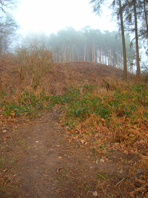 Pulborough Mount