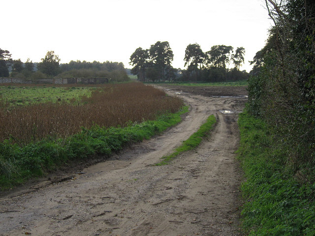 The Track To Redlodge Farm