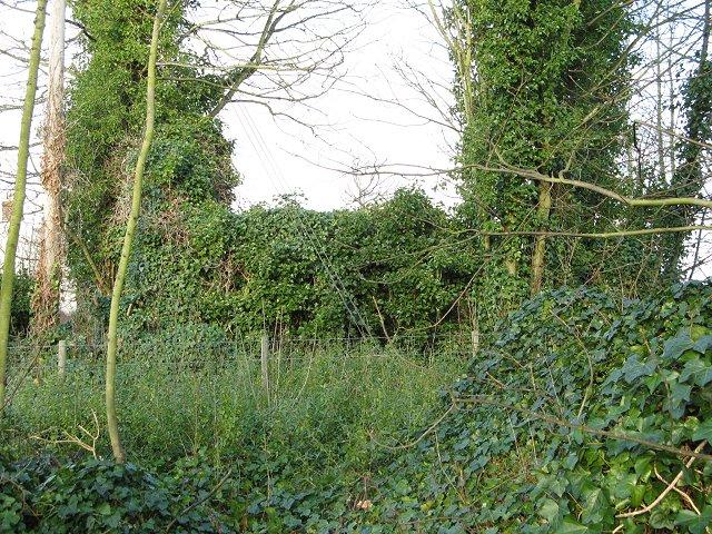 Ruin, Horndean