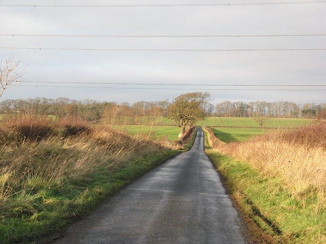 Road near Belchester, Berwickshire.