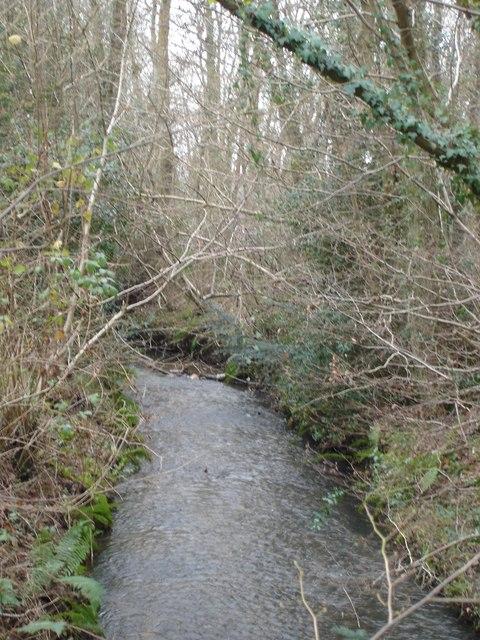 The stream from Hart's Bridge