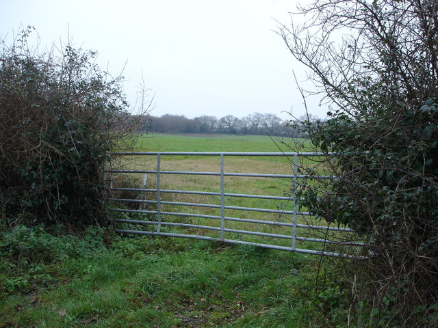 Gate by Horton Road