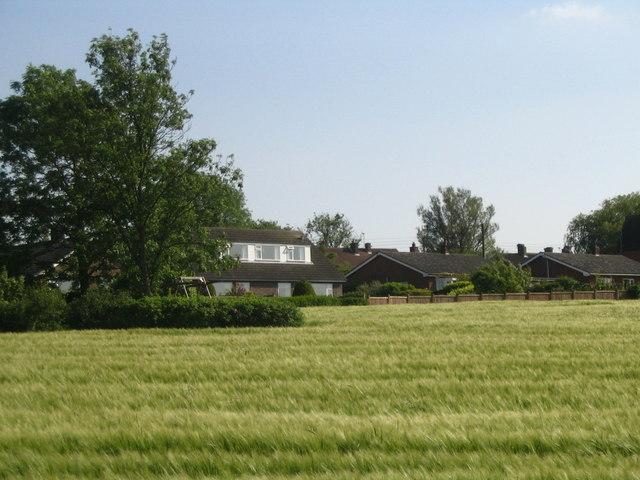 The field behind Cross Lane