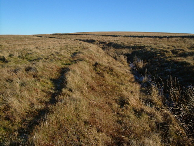 Bridleway and ditch, Petertavy Great Common