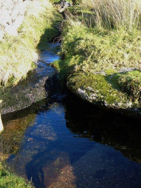 Pool on edge of Wapsworthy Common