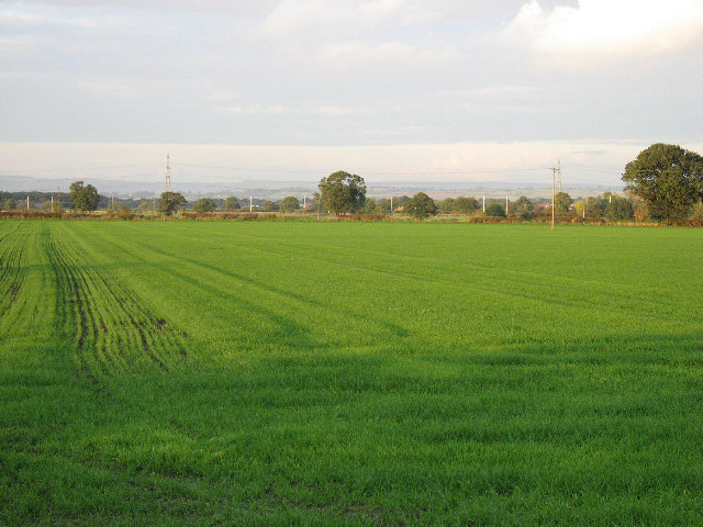 Towards The Howardian Hills