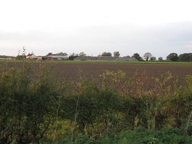 Driffield Farm