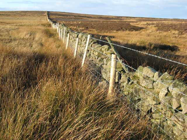 Boundary wall and fence, Wolsingham Park Moor