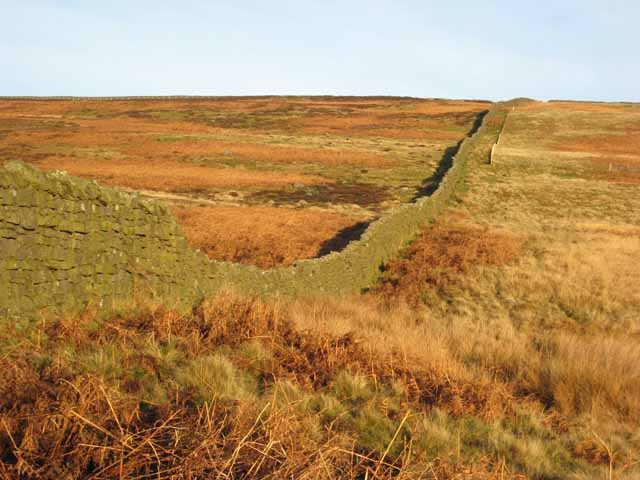 A stout wall on the moors above Waskerley Beck