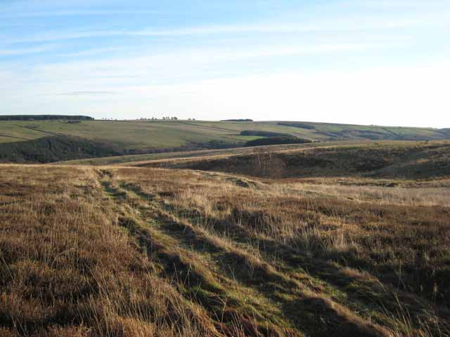 Moorland track, north of Slateyford Plantation