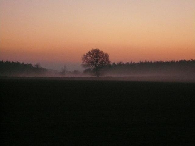 Evening Mist rolls in from Farley Moor