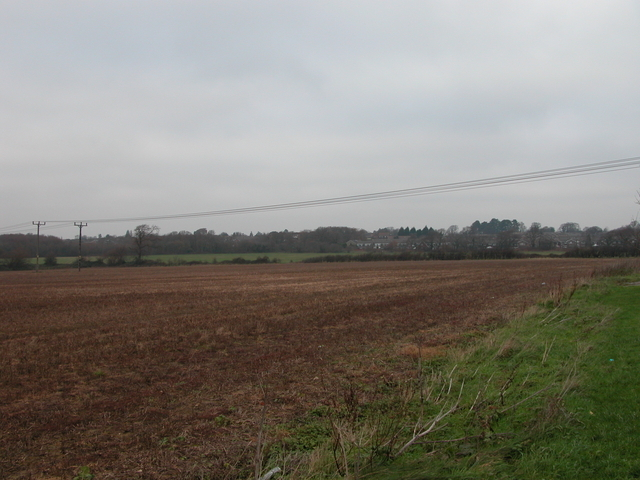 Farmland, South of Fareham