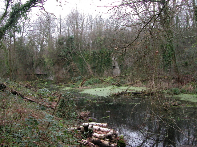 The moat of Fort Fareham