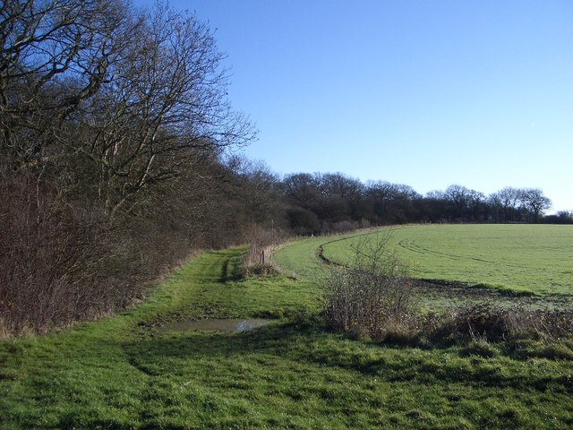 Bridleway on Southern Edge of Three Shire Wood
