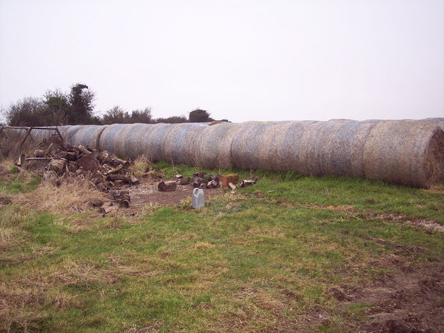 Straw and Logs