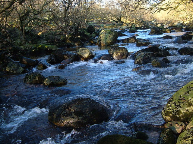 River Tavy between Coffin Wood and Standon Steps