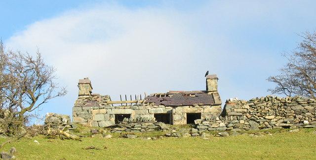 Braich, Lon Garret - an abandoned homestead