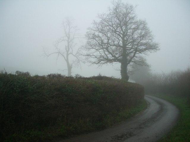 Lane near Westhope