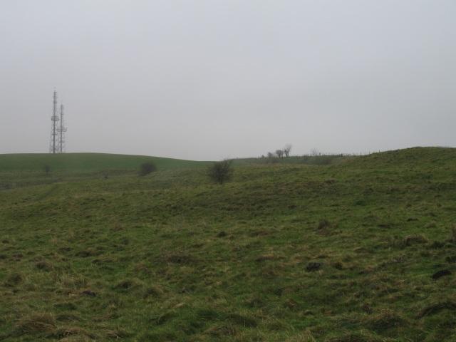 View east along Wansdyke at Morgan's Hill