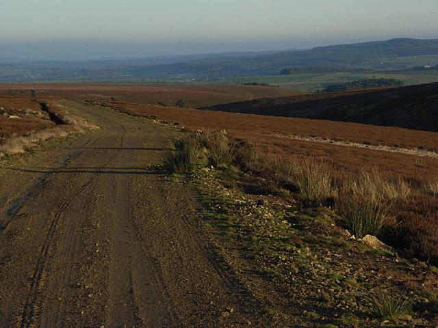 Track, Eshells Moor