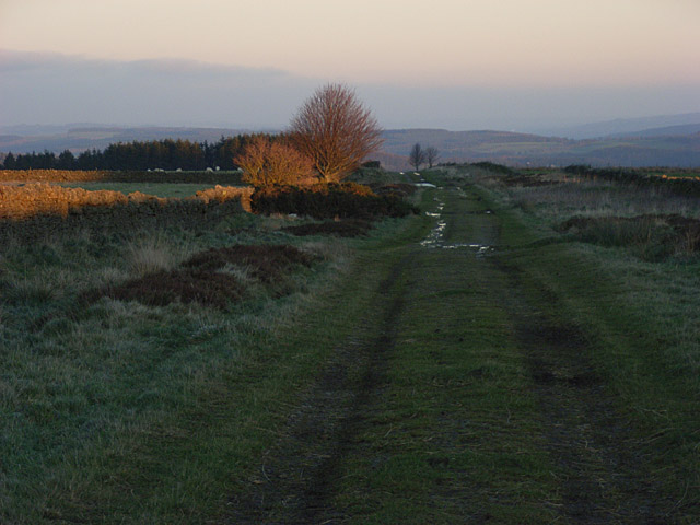 Track above Eshells
