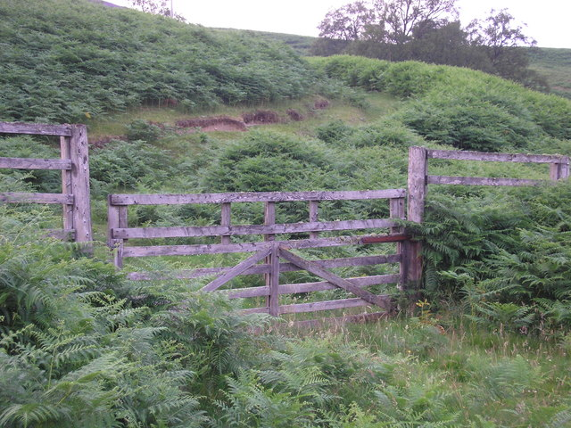A gate and rough track