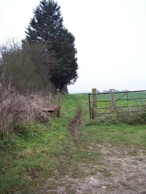 Bridleway to Stratford Tony