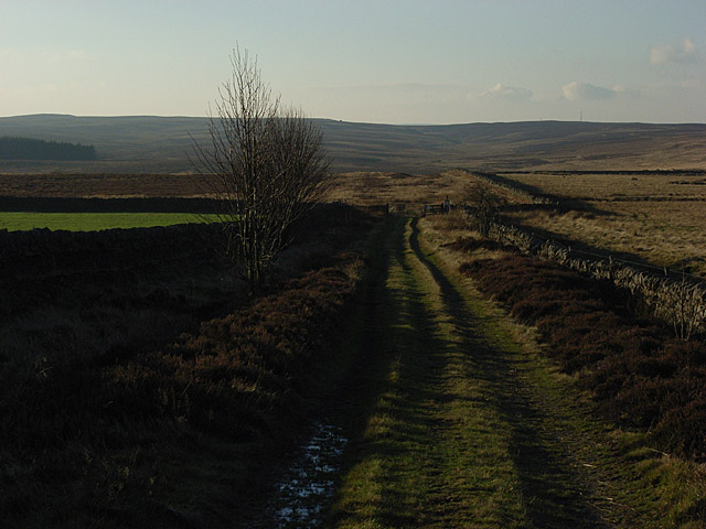 Track onto the moor, Lord's Lot