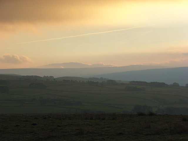 Pastures and moors of East Allen Dale