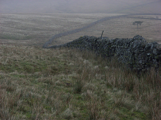 Wall above Langdon Beck