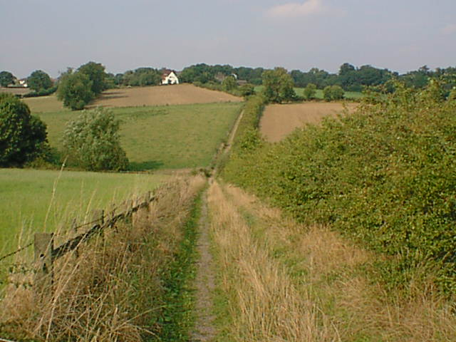 Old Lad's Lane View Towards Tupton