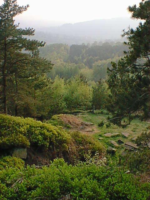 Hell Bank Plantation View