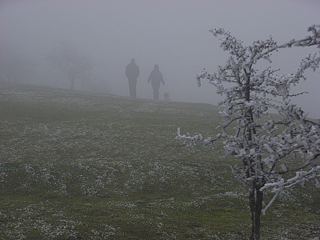 Disappearing into fog on Watlington Hill