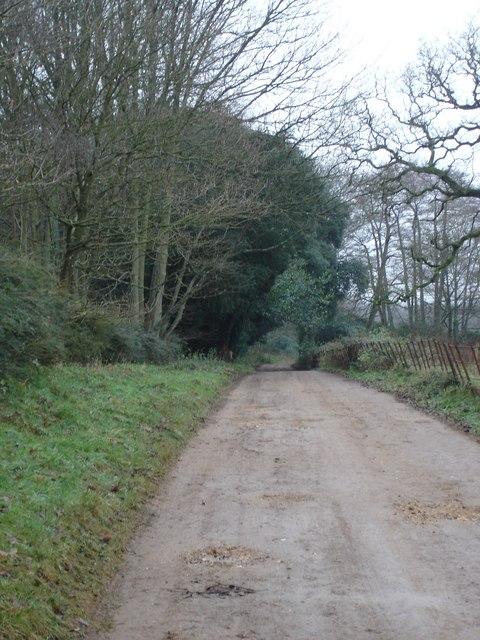 Back Lane to Gaunt's House School
