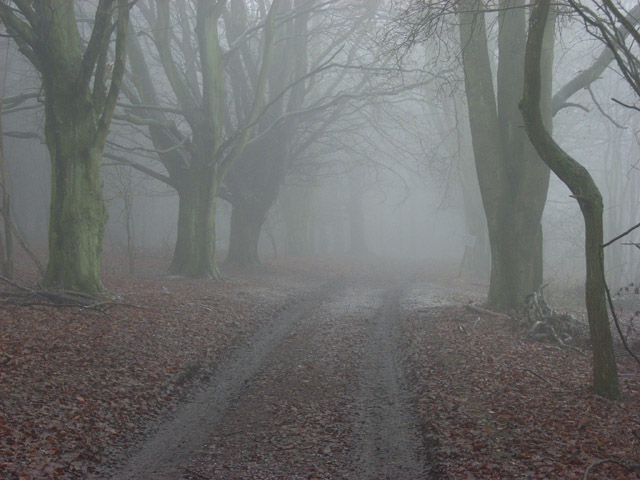 Track on Watlington Hill