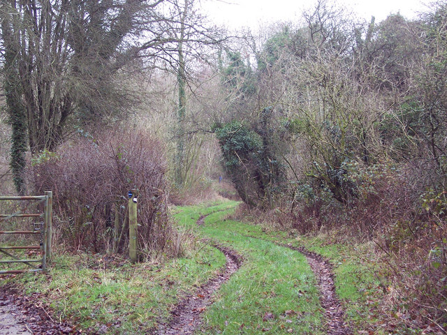 Bridleway to Stoke Down