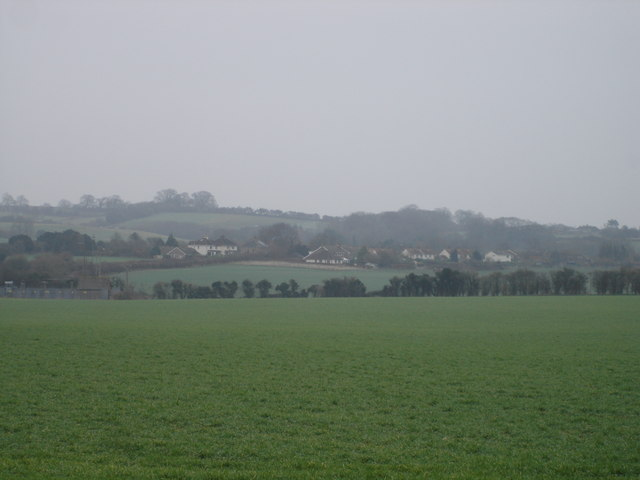 View towards Hinton Martell
