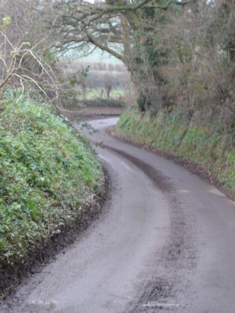 Winding Woodcutts Lane