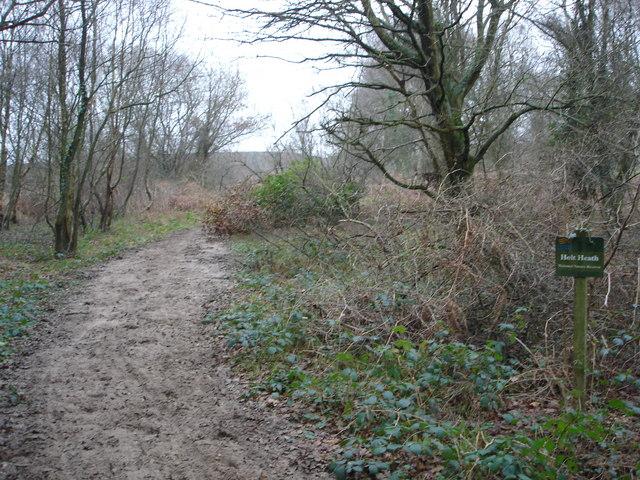 Track onto Holt Heath near Paradise Farm