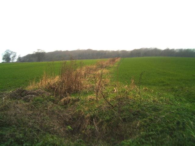 Fields near Dole Wood