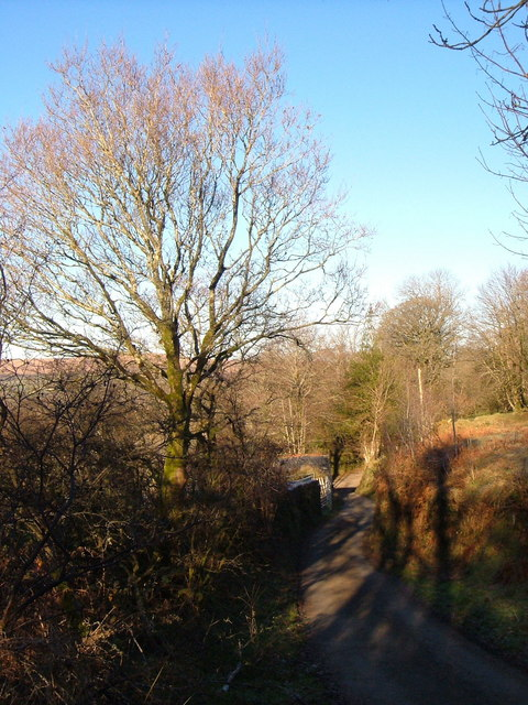Lane past Cudlipptown Farm