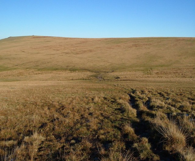 Upper valley of Youlden Brook